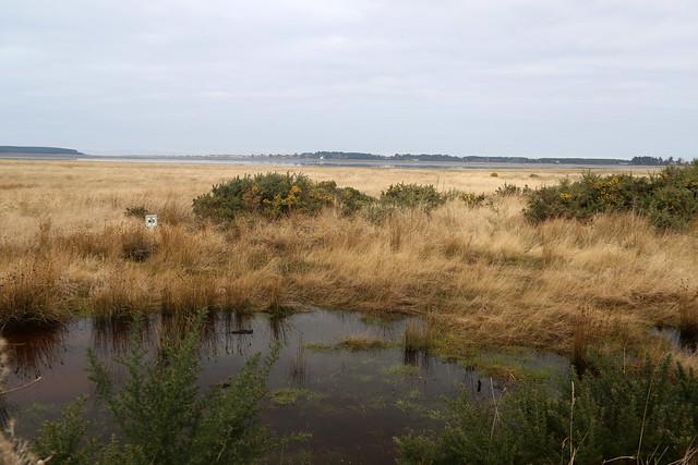 Findhorn Bay
