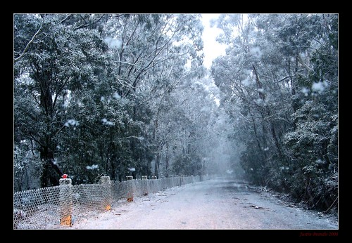 road winter snow drive bush country australia bluemountains nsw snowfall jenolan jenolancaves