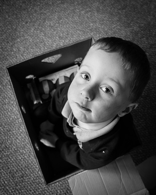 5 years old and he's still in a box - DSC00300