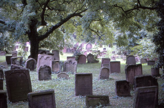 The Old Jewish Graveyard of Worms 02