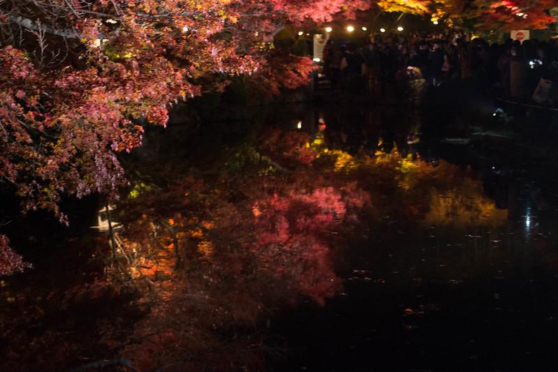 20141122-武奈ヶ岳&京都ライトアップ-0857.jpg