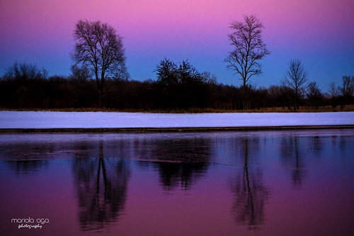 winter evening sunset twilight lake shoreline trees snow water frozen reflection cold sweet colors pink blue white black serene silhouette nature landscape thegalaxy infinitexposure ende