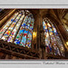 two windows jan3 by rexcoleman560