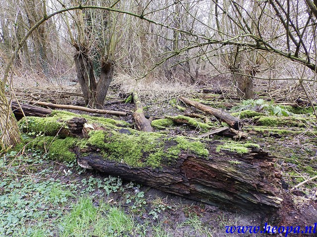 2016-02-20 Nobelhorst Almere 26.1 Km (74)
