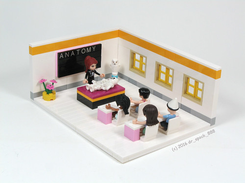 LEGO Friends Classroom | by dr_spock_888