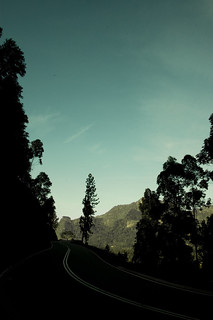 on Route Nuwara Eliya