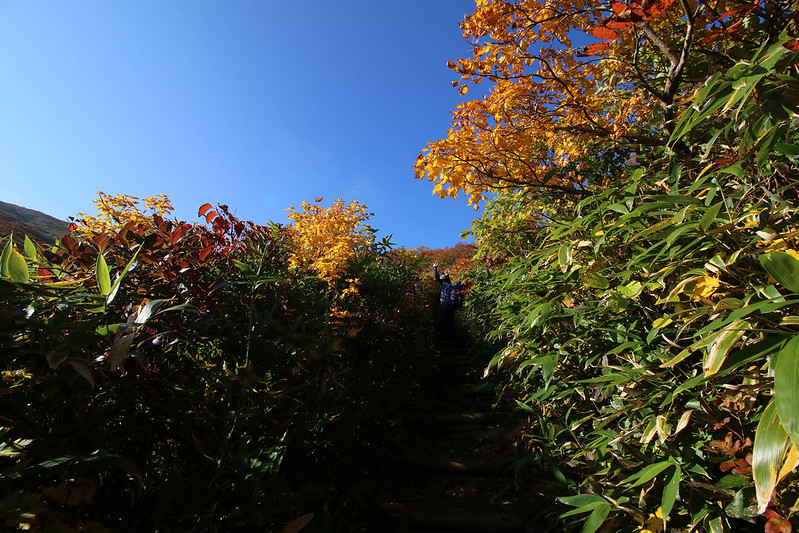 2014-09-28_00310_栗駒山.jpg