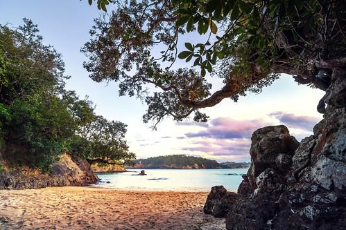 trees sunset newzealand cloud sun sunlight tree beach nature sunshine clouds strand landscape sand sonnenuntergang sundown sony natur wolke wolken landschaft baum neuseeland a77 sonnenschein sonnenlicht matapouri