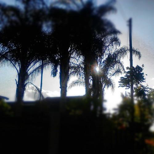 sunset 254 uploaded:by=flickstagram instagram:photo=354337680324881023227669921 instagram:venuename=thika instagram:venue=54250120