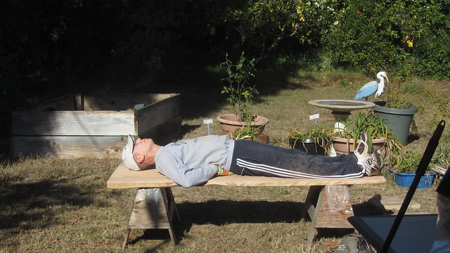 IMG_8574 tt redwood bench first try