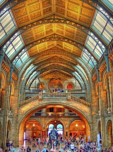 Natural History Museum HDR | by *Tom*