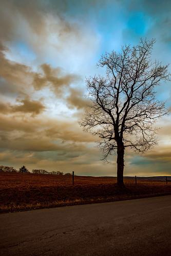 travel sky tree home landscape photography explore drama