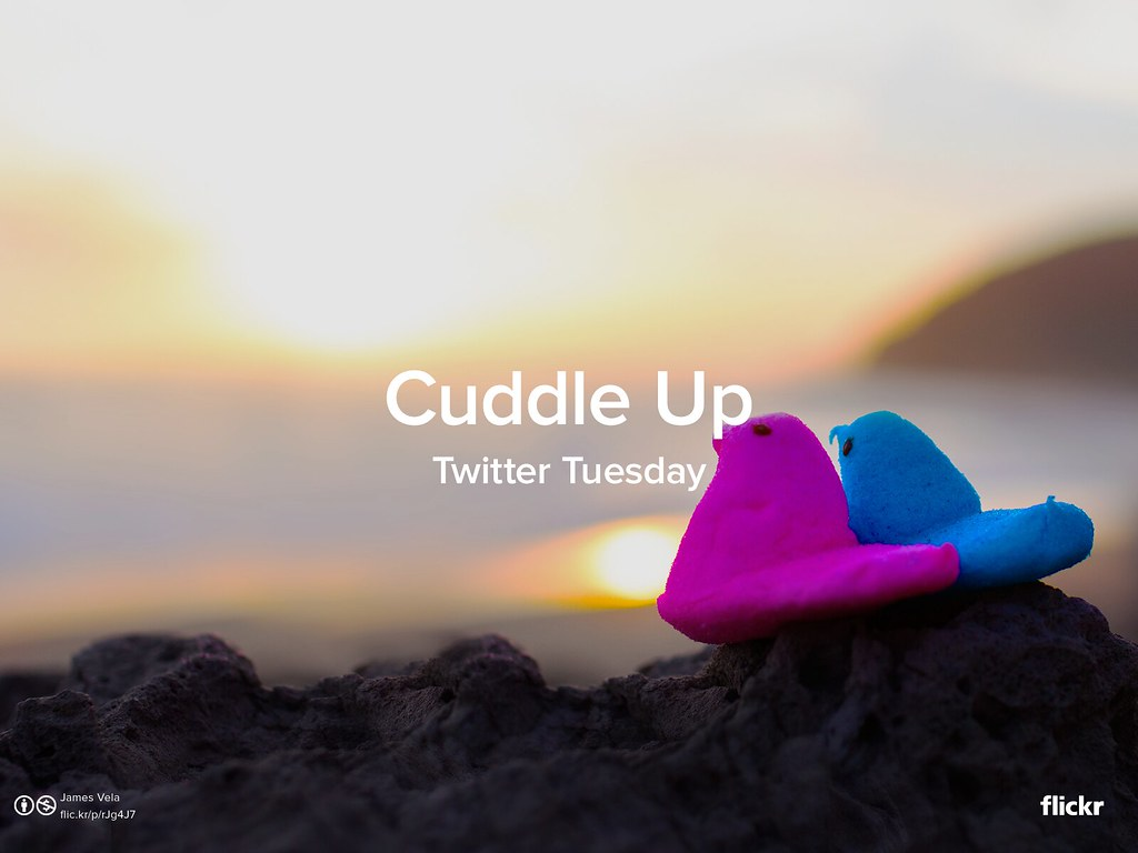 Twitter Tuesday: Cuddle Up