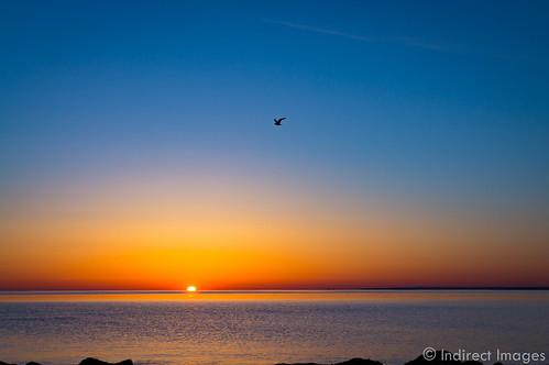 beach sunrise capecod