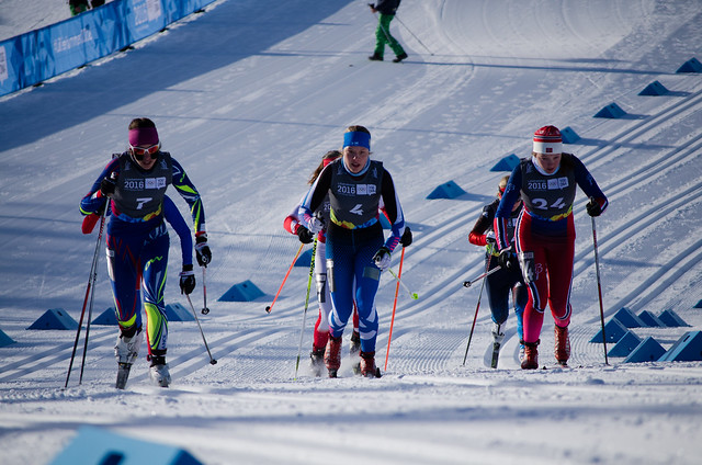 Cross-Country Skiing Sprint