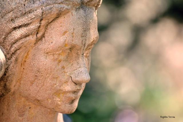 Rostro de mujer esculpido