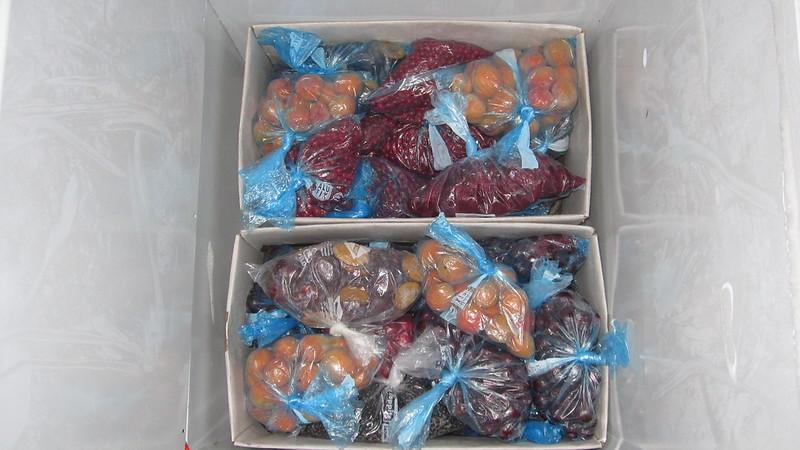 Obst einfrieren