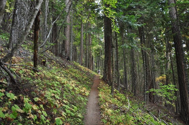 Gumjuwac Trail