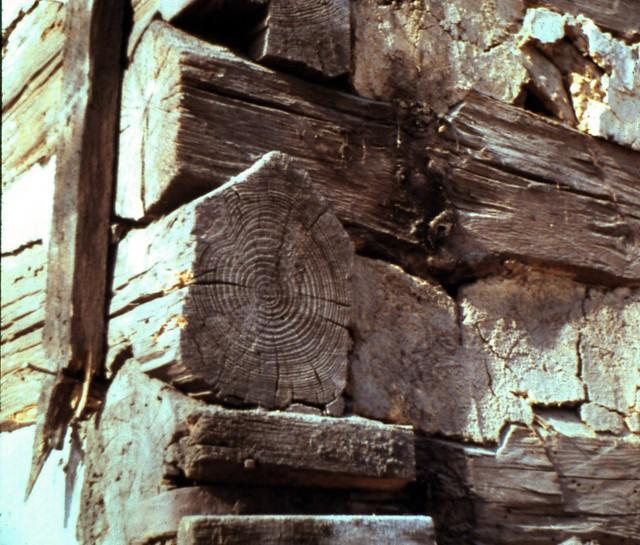 Log detail