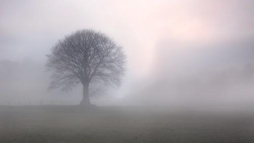 uk sky sun mist fog wales canon landscape eos britain outdoor dam steve cymru cardiff reservoir breconbeacons caerdydd 5d brecon beacons powys mkiii talybont garrington wentloog stevegarrington