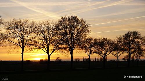 sunset zonsondergang sony wageningen a600 abigfave