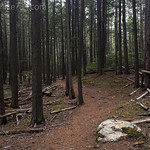 John's Lake Loop Trail