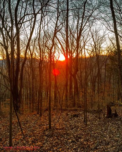 winter sunset usa nature landscape geotagged outdoors photography unitedstates nashville hiking tennessee percywarnerpark geo:country=unitedstates camera:make=canon exif:make=canon geo:city=nashville geo:state=tennessee nashvillehikingmeetup exif:focallength=18mm vaughnsgap tamronaf1750mmf28spxrdiiivc exif:lens=1750mm exif:aperture=ƒ63 mossyridgetrail exif:isospeed=500 canoneos7dmkii camera:model=canoneos7dmarkii exif:model=canoneos7dmarkii geo:location=vaughnsgap geo:lat=3606894000 geo:lon=8689555333 geo:lat=3606894 geo:lon=86895553333333