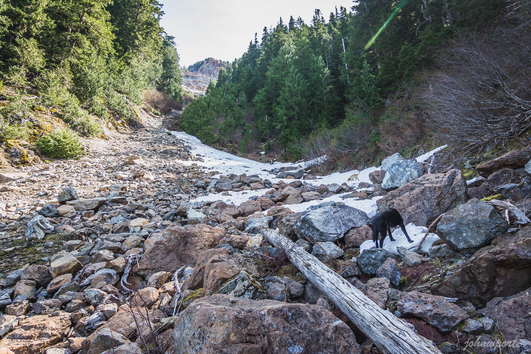 The main gully