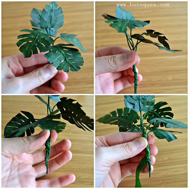 Tutorial planta