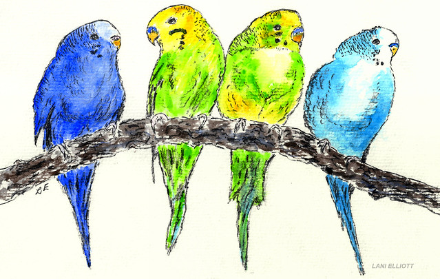 Feathered Friends - Gouache and Pencil