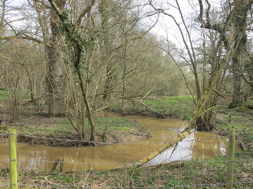 Stream in Claygate Copse, 1 day after Storm Katie had moved through SWC Walk 58 Mottisfont and Dunbridge to Romsey taken by Karen C.