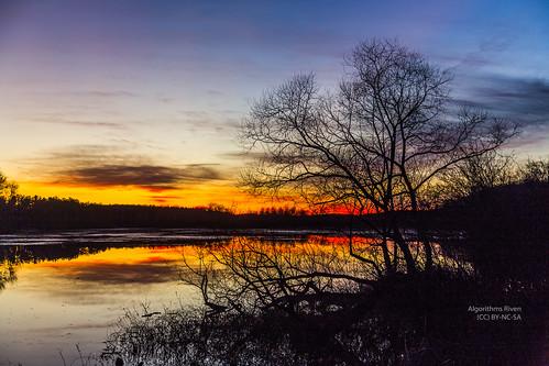 sunset ohio usa lake tree silhouette us kent unitedstates mogadorereservoir