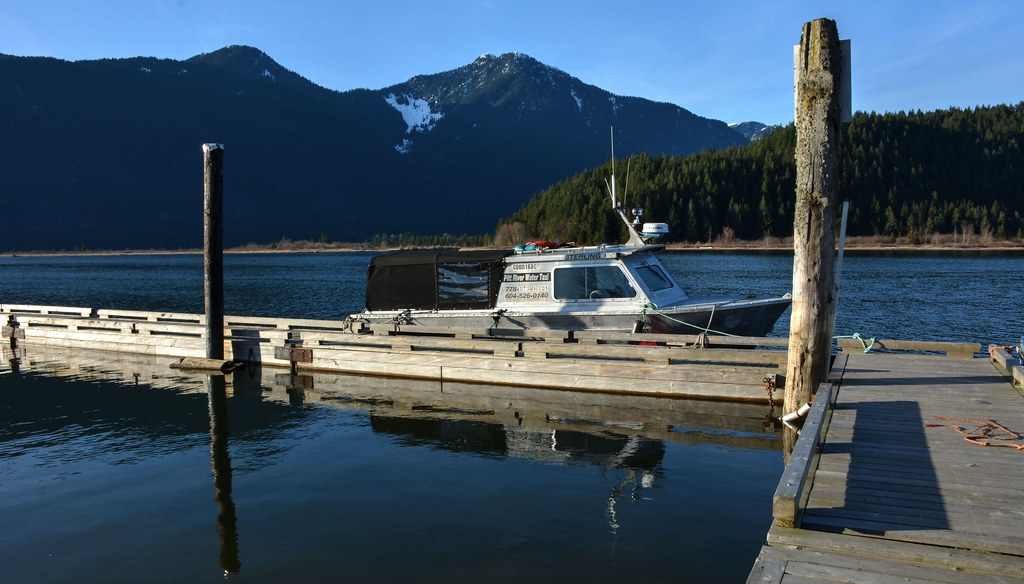 Taxi Maple Ridge >> Pitt River Water Taxi Pitt Lake Marina Maple Ridge Bc C