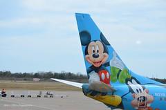 Hello Mickey!