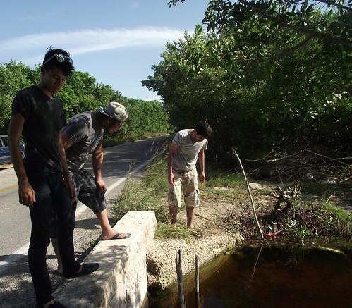 Sisal, Yucatán