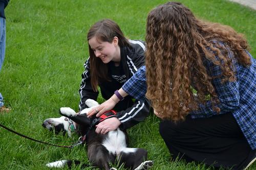De-stress With Pets