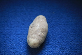 My Million Dollar Potato Photo | by Carol (vanhookc)