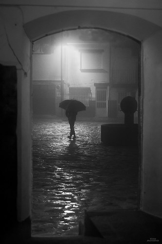 Lluvia, niebla, invierno... Piornal II | by vitometodio
