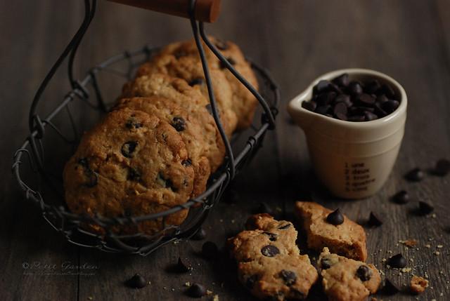chocolate and walnut cookie