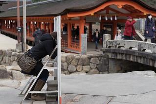 初詣 厳島神社 | by Tony Tani