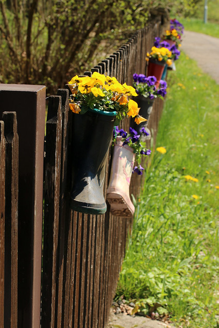 Decorated Fence