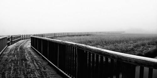 bridge winter blackandwhite bw mist snow cold nature monochrome fog landscape denmark frost sony danmark skive jutland jylland dsch5
