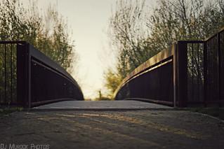 follow the light..   by dj murdok photos