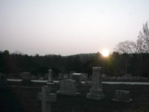 trees friedhof cemetery graveyard uv northcarolina uva ultraviolet gravestones necropolis sonnenabgang