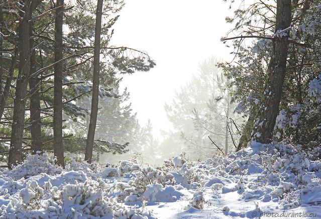 La neige et le soleil VIII