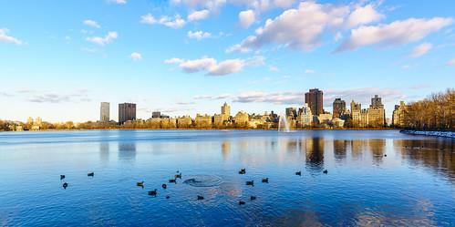 nyc centralpark night sunset newyorkcity newyorkstate newyork newyorksunset jacquelinekennedyonassisreservoir reservoir manhattan ducks sony sonya7riiwithefmountlens a7rii ilce7rm2 tamron tamronsplens tamronsp1530 autofocus tamron1530