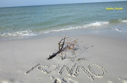 I love National Academy of Osteopathy - Naples Beach - Florida - Feb 2016