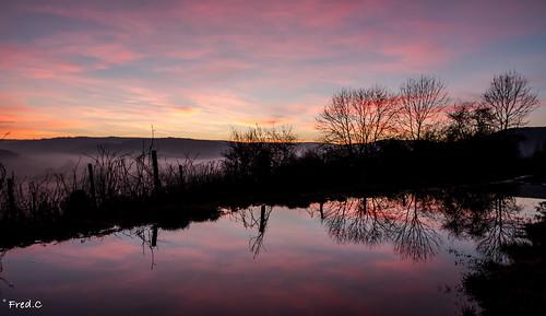 sunset rose burgundy ombre reflet bourgogne cotedor