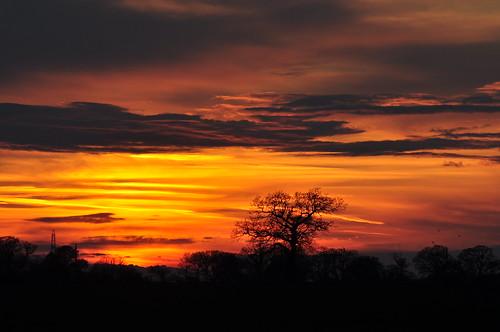 sunset silhouette clouds treesilhouette evening countryside sunsetlight eveninglight coucherdusoleil