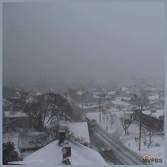 "Martha's Vineyard has entered ""winter wonderland"" status.  #UpOnTheRoof #Blizzard2016 #FiveCorners #BlanketOfSnow #RoofTop #Vista #TisburyTown #VineyardHaven #Harbor #SaltLife #WhiteOut #ZeroVisability #ThisIslandIsClosed #MVwinter #ThisIsNotAWarning #Sno"